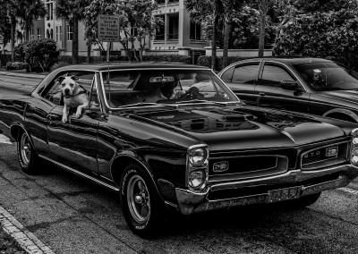 Pontiac GTO, Bj. 1967